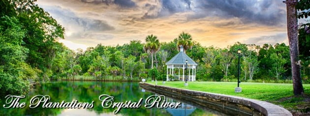 Ocala Magazine: Wedding Destinations Part 2 – Plantation on Crystal River