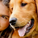 Canine Care: Are We Being Good Pet Parents?